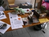 weitere nachhaltige Projekte im Raum Aschaffenburg
